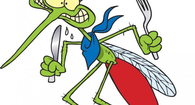 Ξέρετε οτι: Το πιο σκληρό οστό στο ανθρώπινο σώμα είναι η γνάθος. Ο πιο δυνατός μύς στο ανθρώπινο σώμα είναι η γλώσσα. Τα κουνούπια έχουν 47 δόντια.